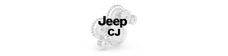 CJ2A CJ3A CJ3B CJ5 CJ7 CJ6 CJ8
